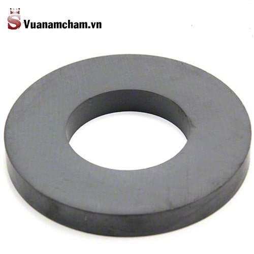 Nam châm Fe 100x12(50)